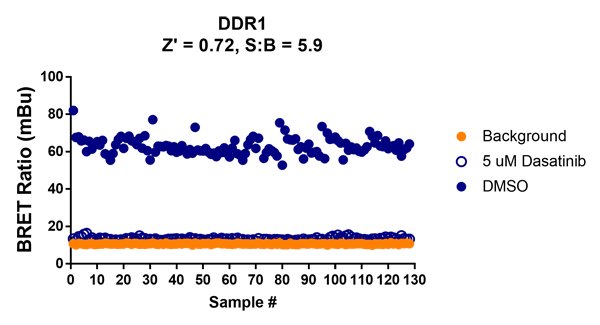 NanoBRET kinase assay reproducibility. Shown is an example of DDR1 inhibition by Dasatinib on 130 samples.