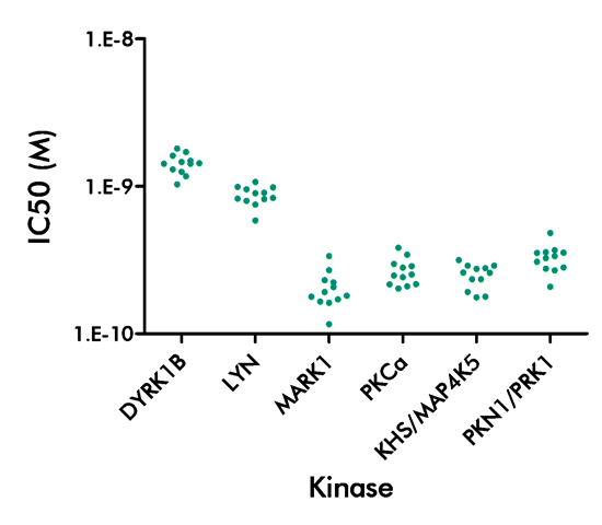 reproducibility radiometric kinase panel screening