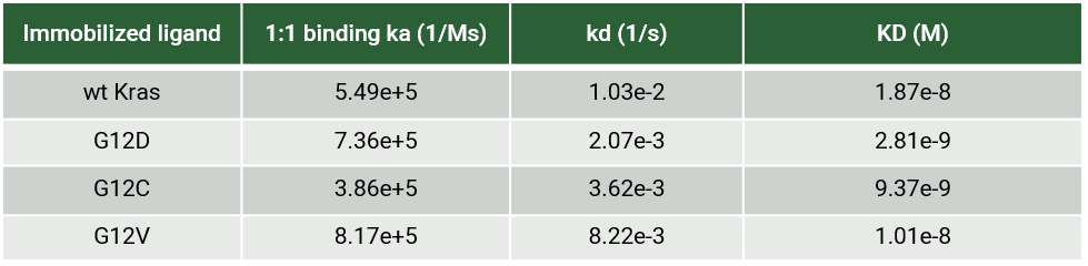 comparison of KRpep-2d bound to KRas wild type and mutants with SPR