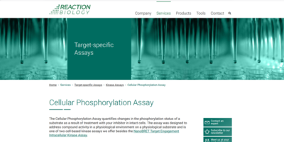 Thumbnail to cell phosphorylation webpage