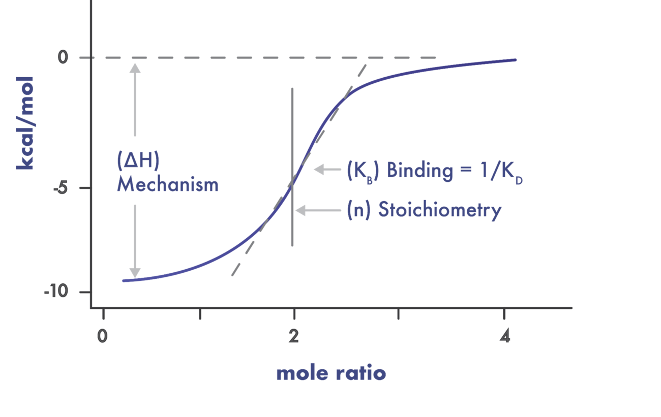 isothermal titration calorimetry example curve with annotations