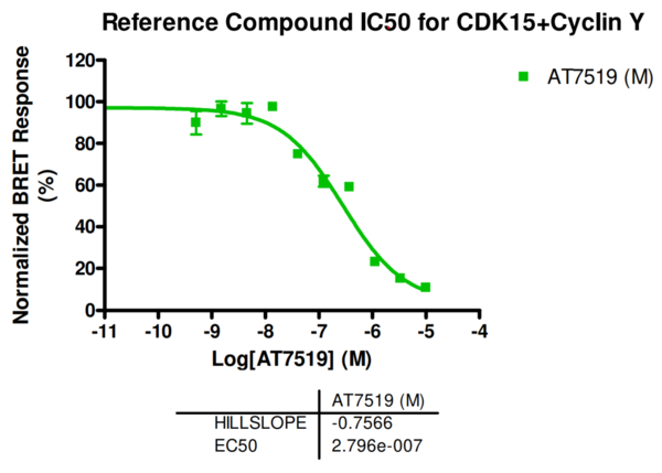 Reference compound IC50 for CDK15+Cyclin Y