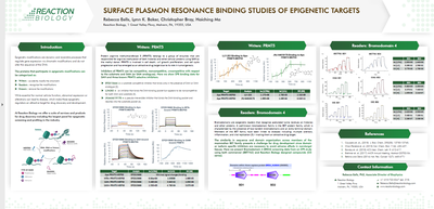 Surface Plasmon Resonance Binding Studies of Epigenetic Targets